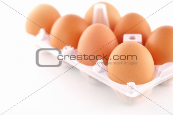 eggs on isolated