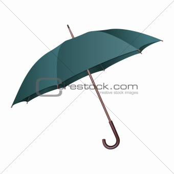 Green umbrella on white background.