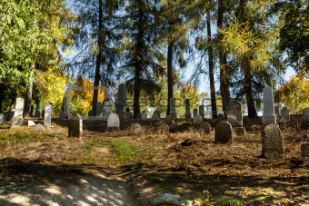 forgotten and unkempt Jewish cemetery