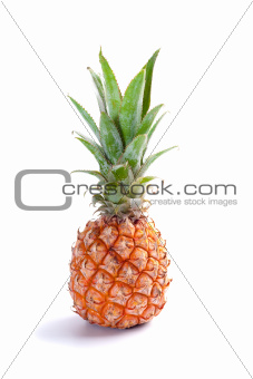 ripe juicy pineapple isolated