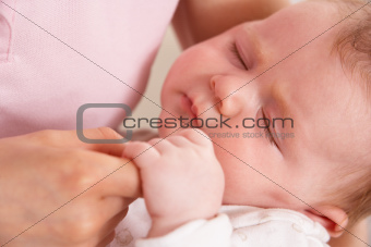 Close Up Of Baby Boy Holding Mothers Hand