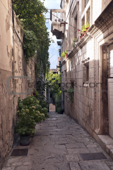 Narrow street with old houses