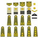 Japanese army insignia