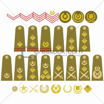 Pakistan Army insignia