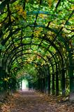 Light at the end of nature tunnel