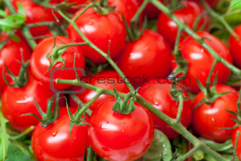 Background of Ripe Cherry Tomatoes