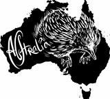 Echidna as Australian symbol