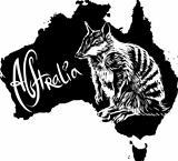 Numbat as Australian symbol