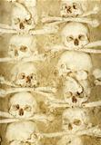 Background with human skulls and bones