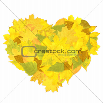 Heart from autumn leaves