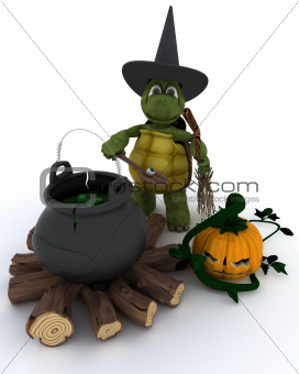 Tortoise witch with cauldron of eyeballs on log fire