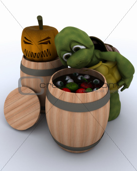 tortoise bobbing for apples in a barrel