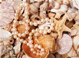 Pearl nacklace on a sea shell background