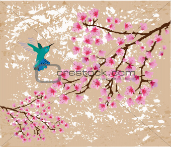blossom branches and hummingbird