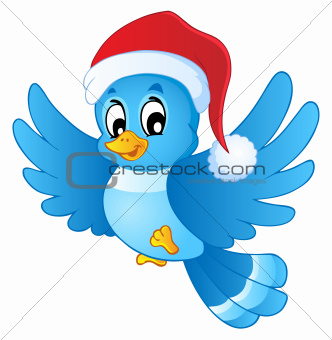 Blue bird in Christmas hat