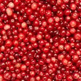 Many small cranberry berries