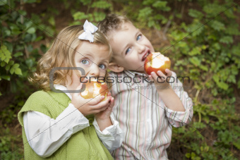 Adorable Brother and Sister Children Eating Big Red Apples Outside.