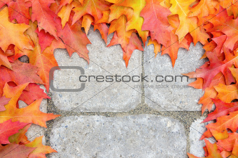 Oak Leaves Frame Over Stone Bricks