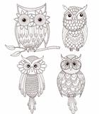 Set of cute owls.