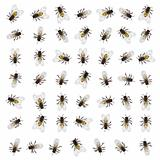 Seamless bee pattern