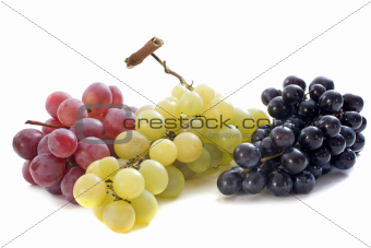 three varieties of grapes