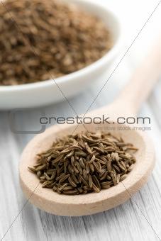 cumin seeds in wooden spoon