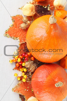 Autumn border with Red Kuri Squash