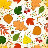 seamless pattern with autumn leaves, berries and points
