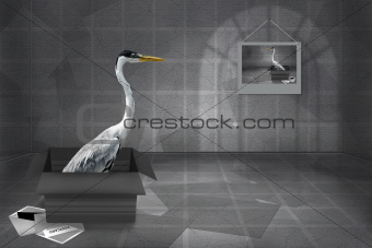 Heron Gray Greeting Card