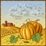 Landscape with pumpkins