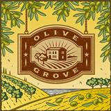 Retro Olive Grove