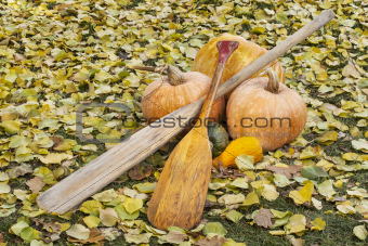 old paddles and pumpkin
