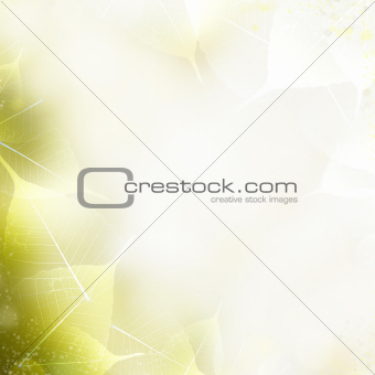 Background - beautiful nature border with leaves
