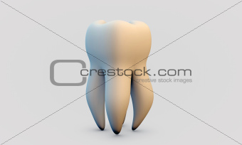 white tooth