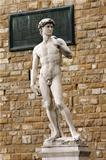 David of Michelangelo , Piazza della Signoria, Florence - Italy