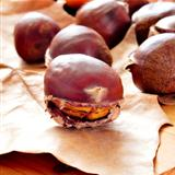 roasted chestnuts, typical snack in All Saints Day in Spain