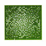 grass maze