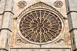 Leon Cathedral Rosette