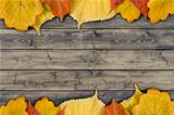 autumn leaves on the rural wood planks