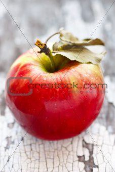 Wet red apple.