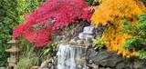 Waterfall with Japanese Maple Trees in Fall Panorama