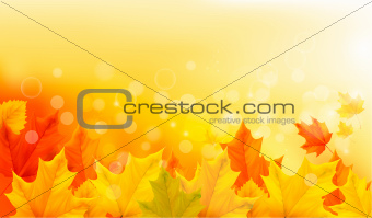 Autumn background with yellow leaves and hand. Vector illustration.