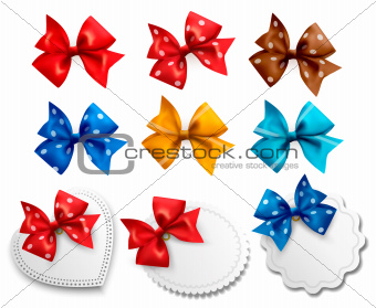 Big collection of colorful gift bows and labels