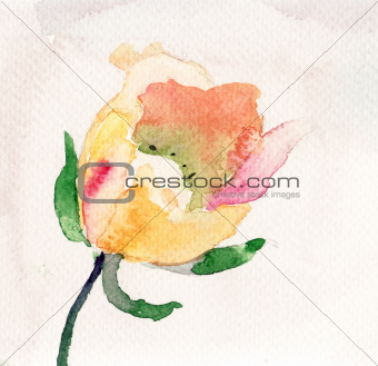 Watercolor illustration with beautiful flower