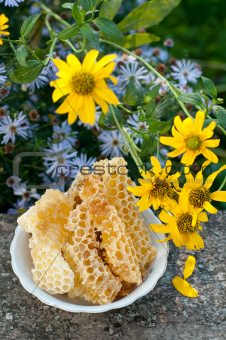 Natural honey in the comb