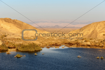 Water in Judean Desert