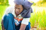 Myanmar male farmer