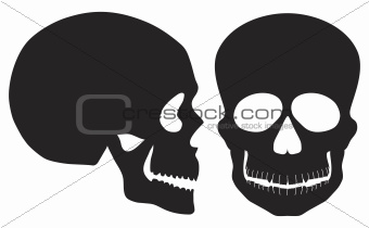Skulls Black and White Front and Side View
