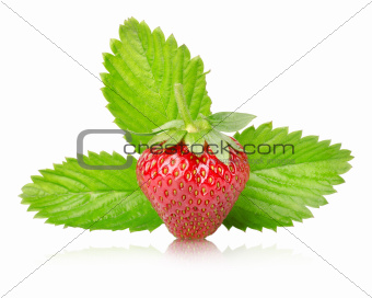 Ripe strawberries with leaves isolated
