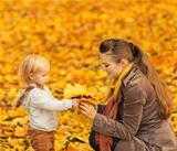 Young mother showing baby fallen leaves
